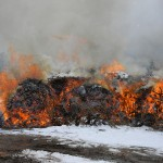 2018 Perry Park Pile Burn Project